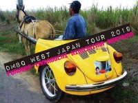 beetle tour